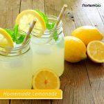 NortemBio Acide Citrique 500g. La Meilleure Qualité Alimentaire. Intrant Biologique. Poudre, 100% Pure. Développé en Francia. de la marque NortemBio image 4 produit