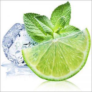 SLV1008 Sticker Cuisine Lave Vaisselle Citron vert glaçon 60x60cm (Fond Transparent) de la marque PPA-DESIGN image 0 produit